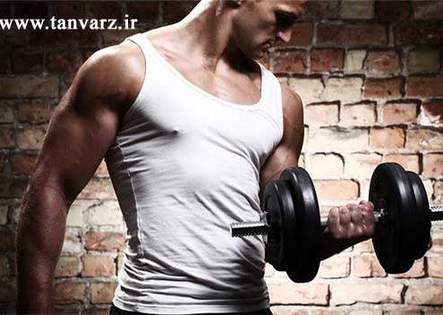 افزایش تستوسترون